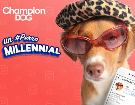 Champion Dog – Frutix